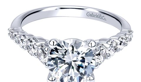 Sample engagement ring from Gabriel NY and Co.  Diamonds =.75ct  Style ER11757R6ALZJJ  $2940.00 (without center stone)