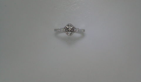 Semi-mount engagement ring in 14kt white gold with 46 diamonds =.31ct.  Style 723-0020 $1800.00