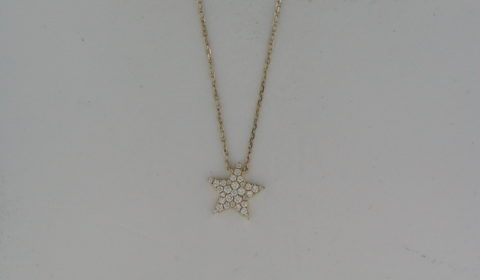 Star necklace in 14kt yellow gold with 31 diamonds =.21ct on an 18in chain.  Style N45760ED7021.  $1150.00
